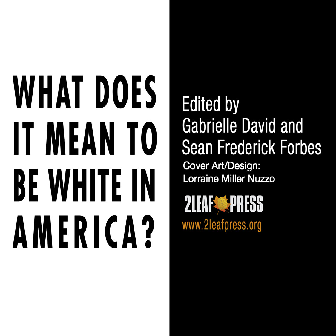 An Update on WHAT DOES IT MEAN TO BE WHITE IN AMERICA?