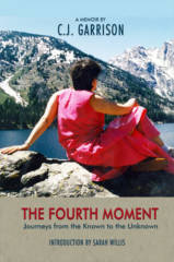 THE FOURTH MOMENT BOOK COVER
